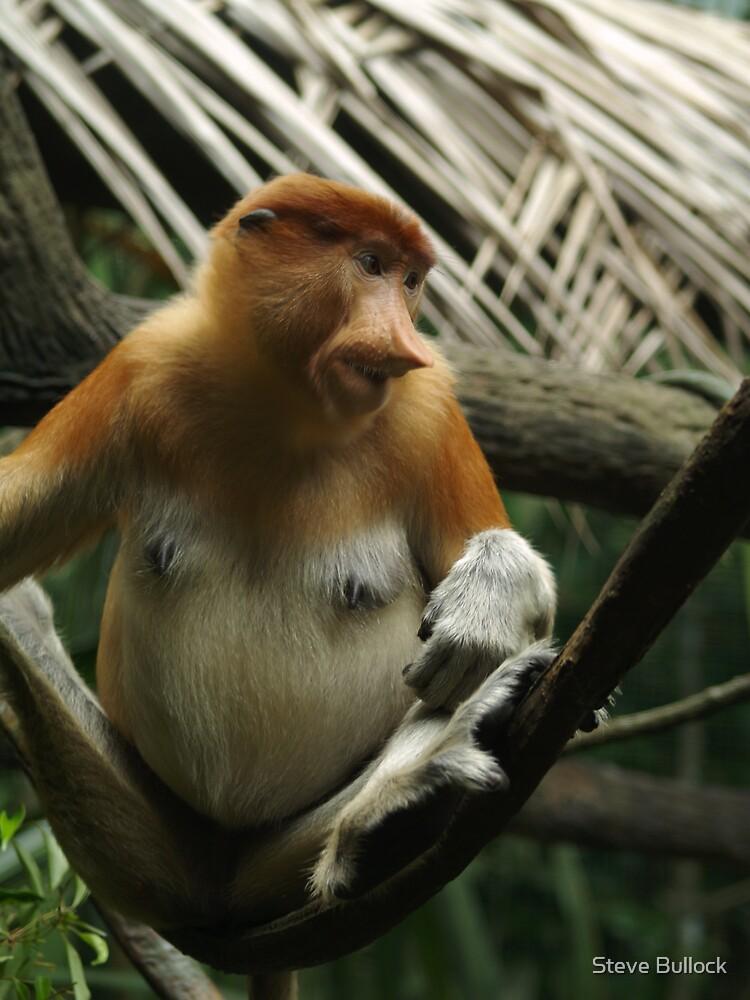 Monkey Business by Steve Bullock