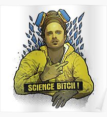 Breaking Bad - Science Bitch ! Poster