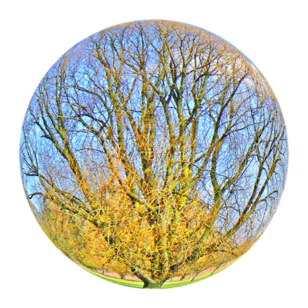 Playing With Photoshop - A Tree On York's Low Moor by AARDVARK