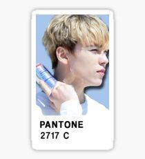 SEVENTEEN PANTONE Vernon Sticker