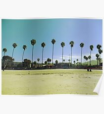 Line of Palm Trees Poster