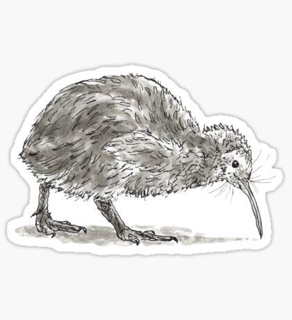 Kiwi Bird Sticker