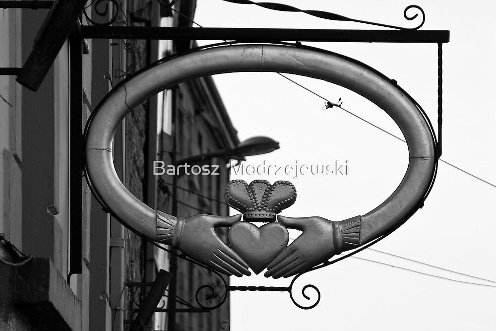 Love  by Bartosz  Modrzejewski