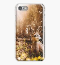 a deer in the yosemite national park iPhone Case/Skin
