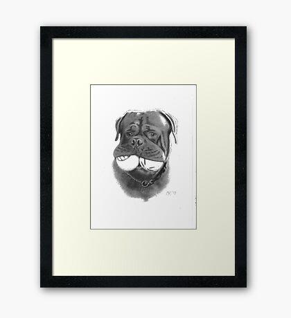 Kato Framed Print