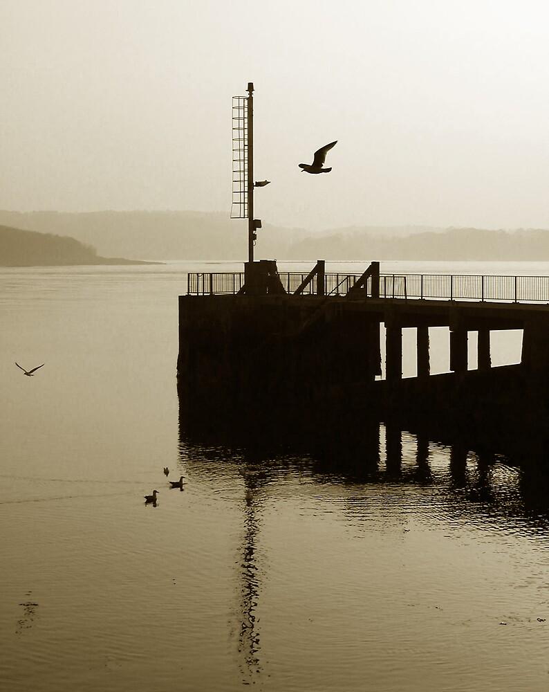 Portaferry Pier  by ragman