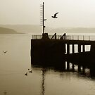 Portaferry Pier  by ragman