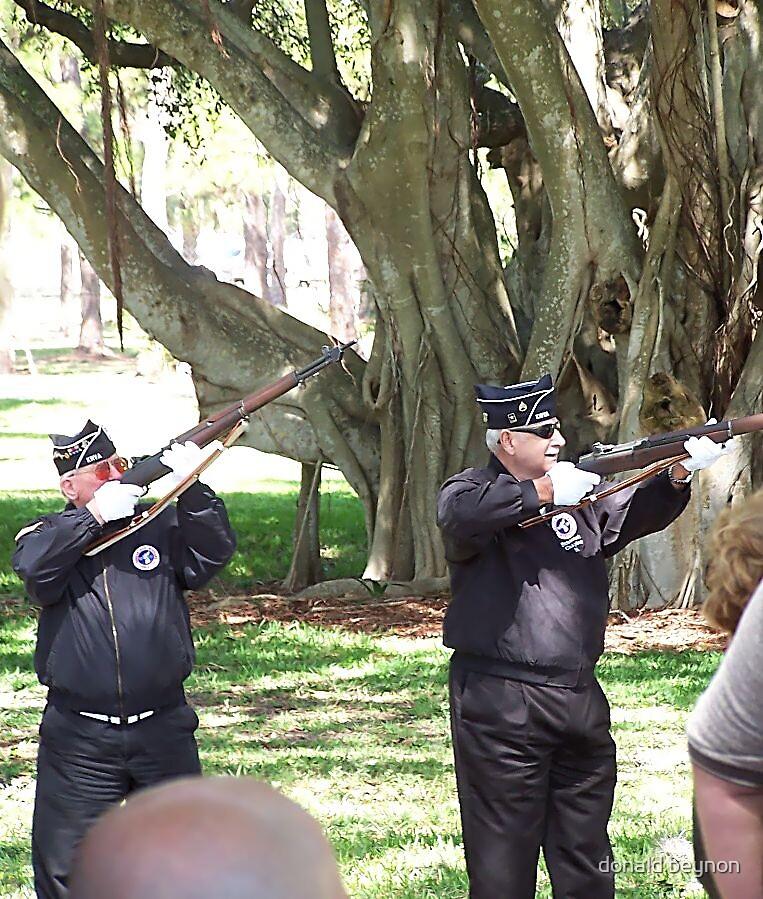 gun salute by donald beynon