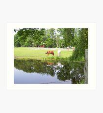 Horses in Berkshires 2 Art Print