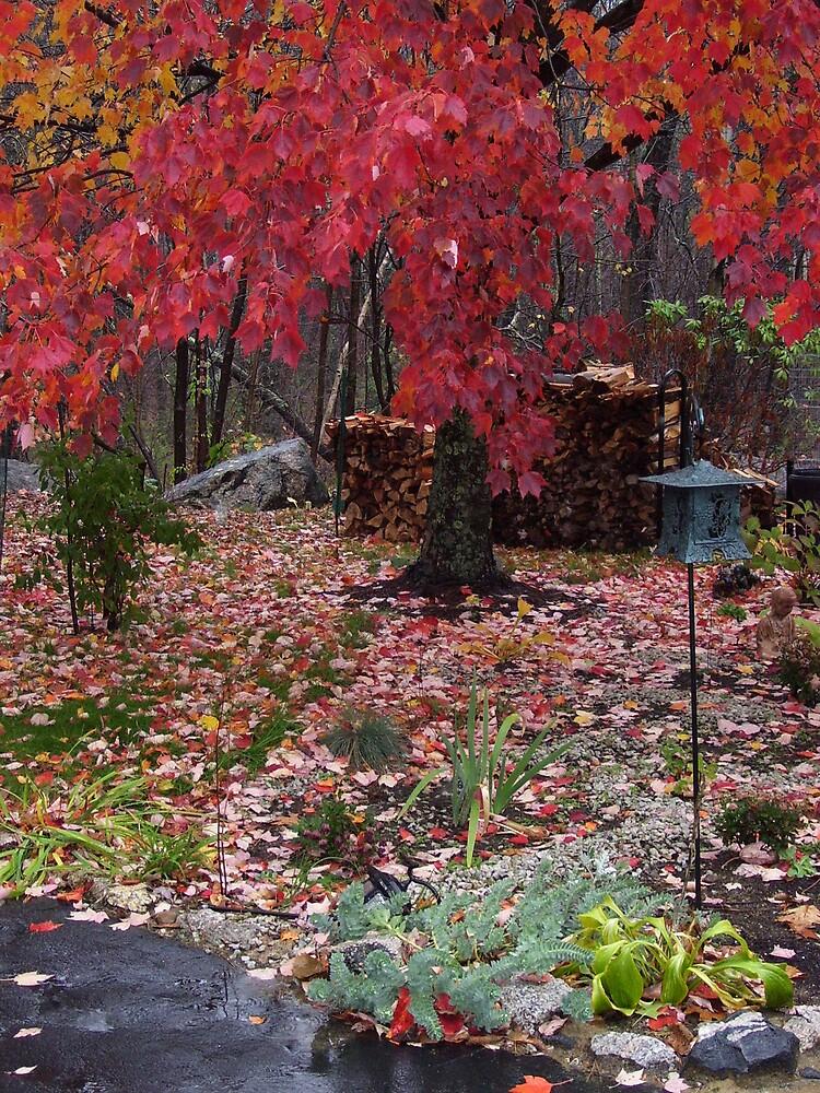 Autumn color 2 by Christine Frydenborg Dargon