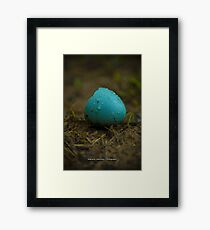 Hatched Robin's Egg Framed Print