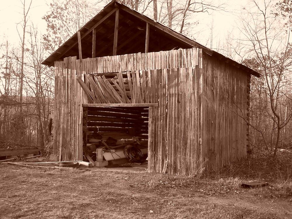 Old Barn by arawlings1987
