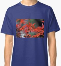 Red Japanese Maple Leaves  Classic T-Shirt