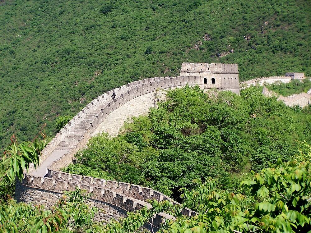 Great Wall, Mutianyu, Beijing 8 by Carrie Norberg