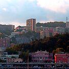 Genoa skyline III by Tom Gomez