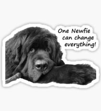 One Newfie Can Change Everything! Sticker