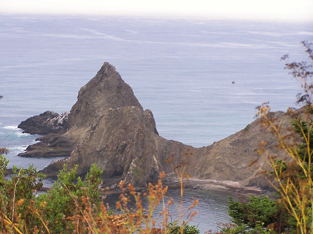 Mendocino Coast View by Carrie Norberg