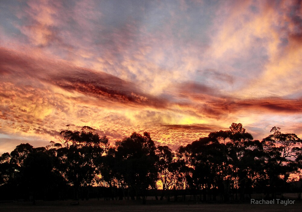 Burning Sky -  Inglewood Victoria by Rachael Taylor