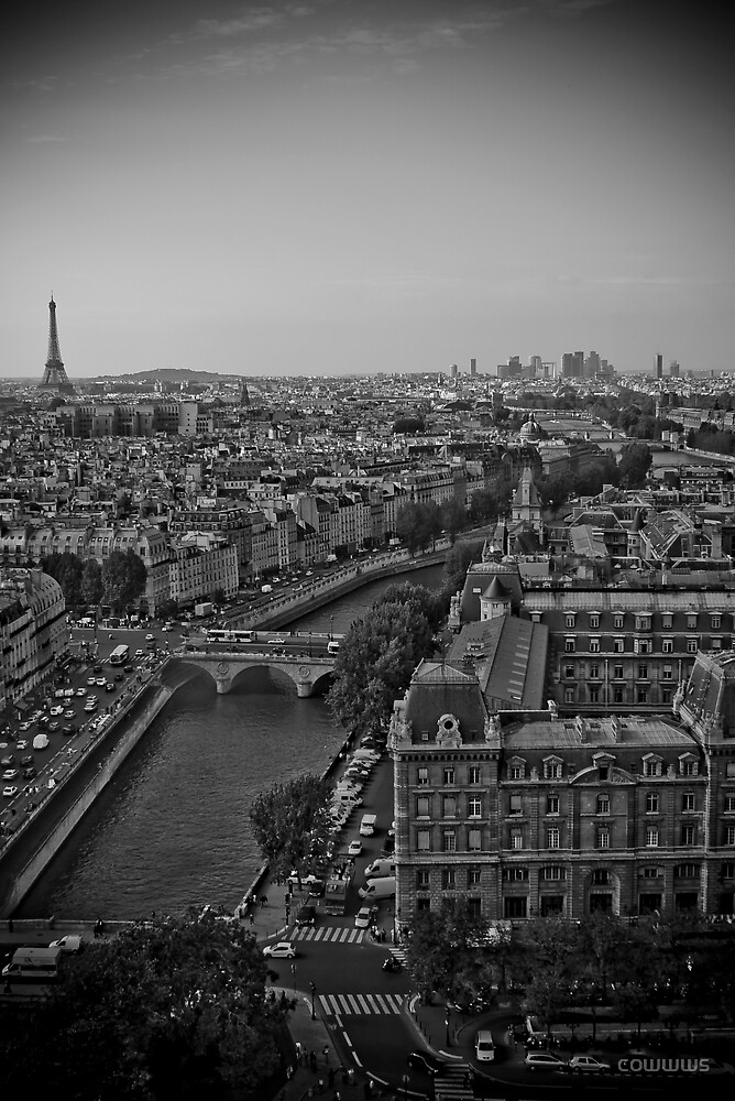 View from Notre Dame by cowwws