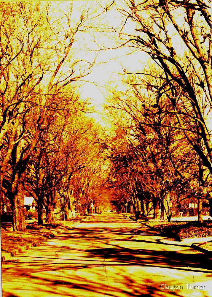 Memory Lane by Clayton  Turner