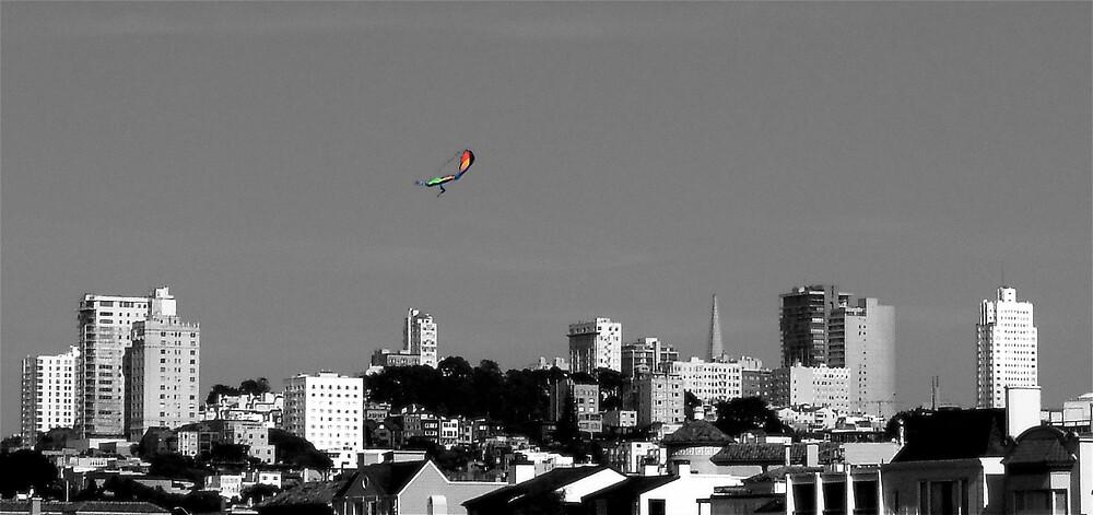 Kite! by Carl Goulding