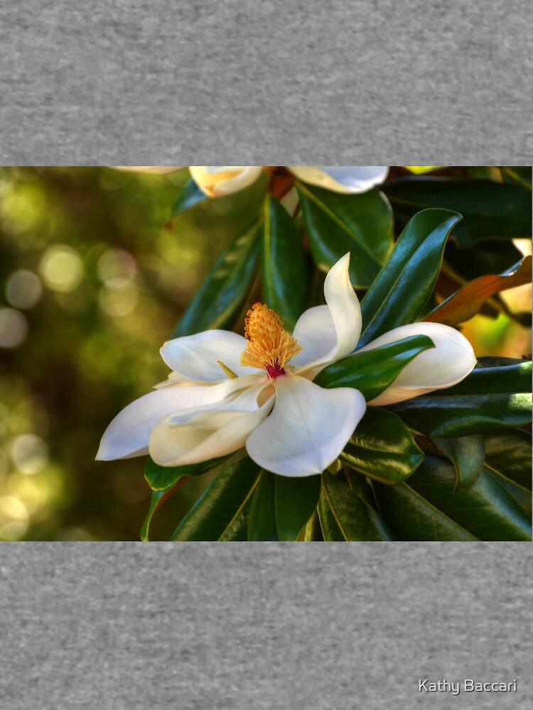 Südliche Magnolienblüte von KBaccari