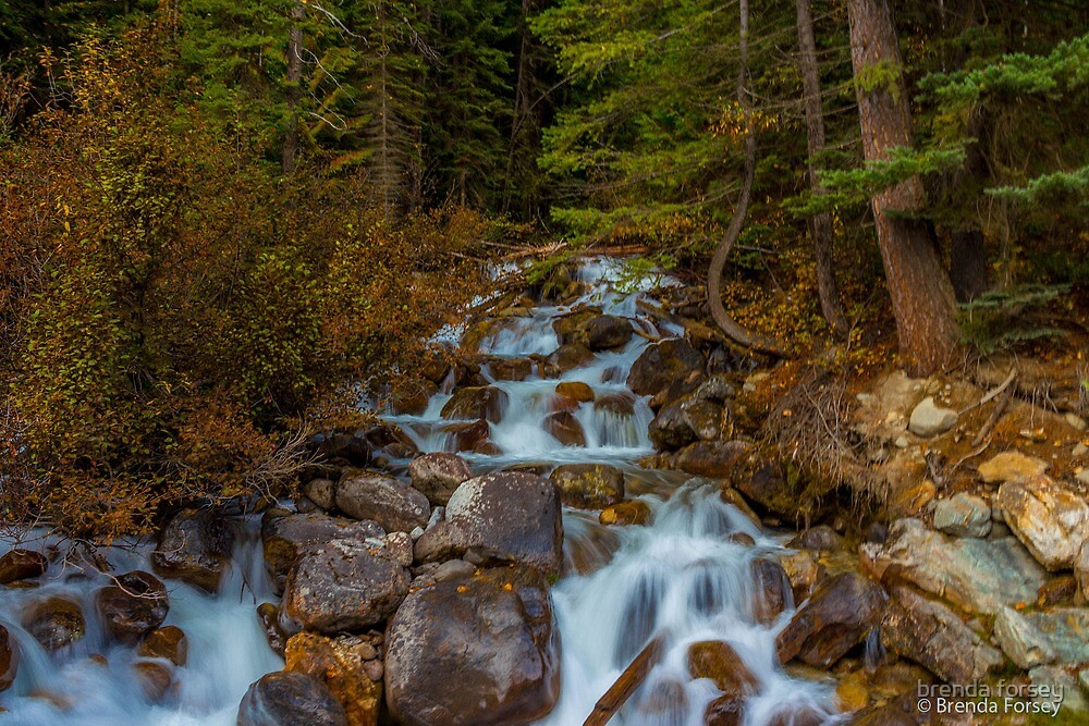 Falls of Peace by brenda forsey