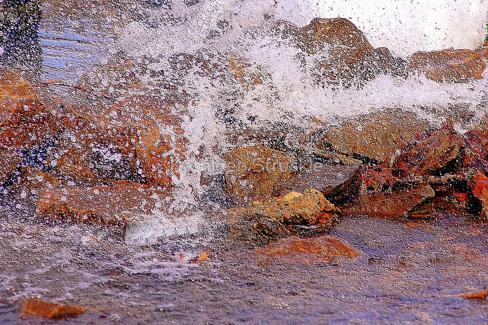 Winter Elements by Kathleen Struckle
