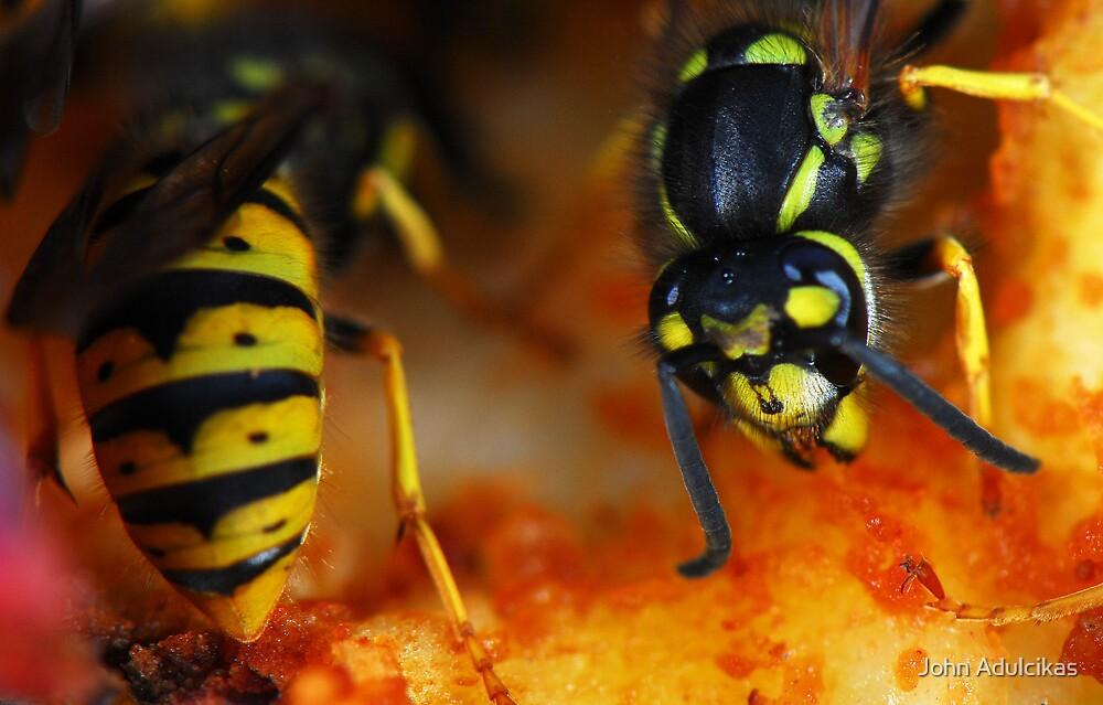 Burning yellow by John Adulcikas