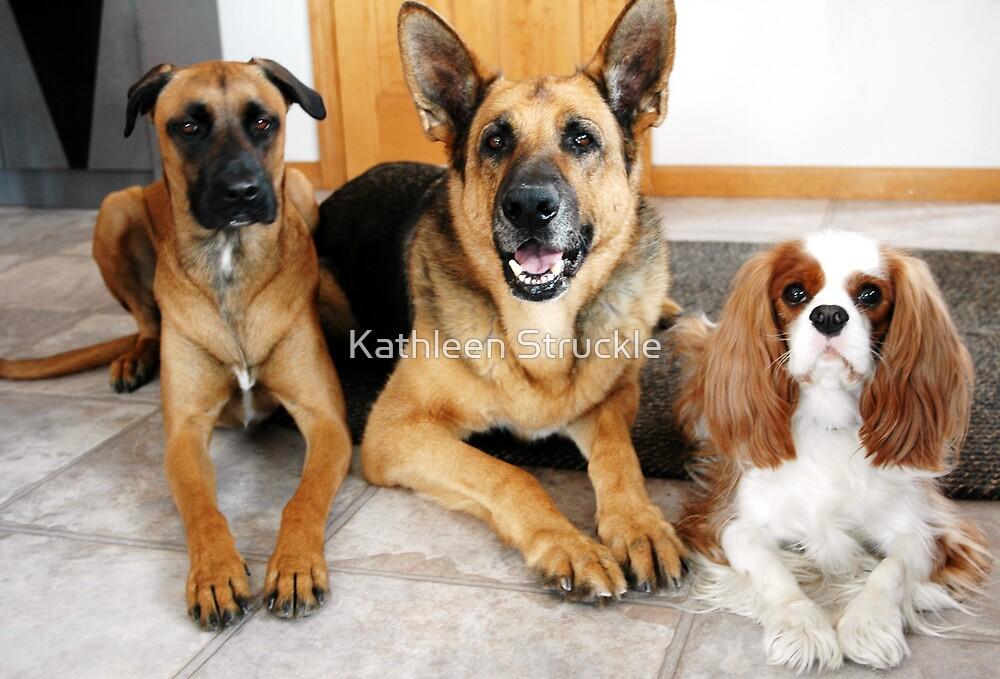 Three Friends by Kathleen Struckle