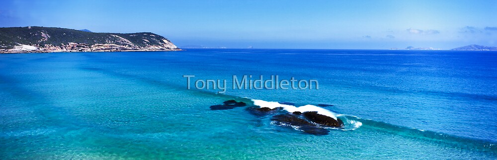 Baby blue - Wilsons Promontory by Tony Middleton