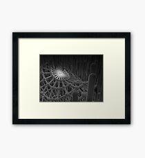 Web Zone Framed Print