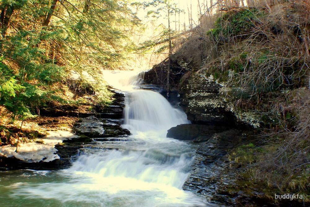 Angel Falls by buddykfa