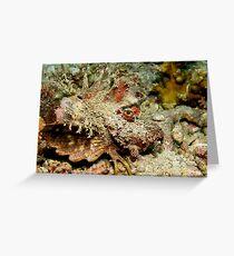 Spiny Devilfish Greeting Card