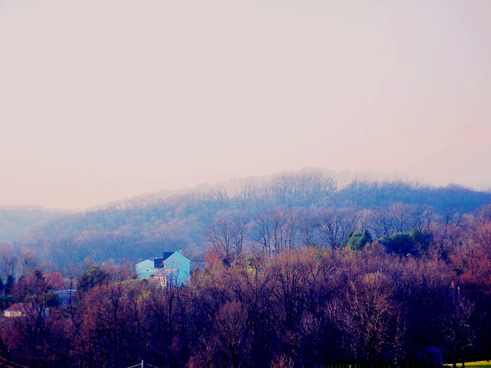Peaceful Hillside by Judi Taylor