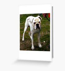How long do we stand here? Greeting Card