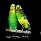 The Arguement by Stevie Mancini
