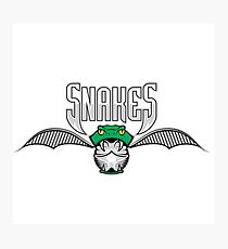 Snakes Photographic Print