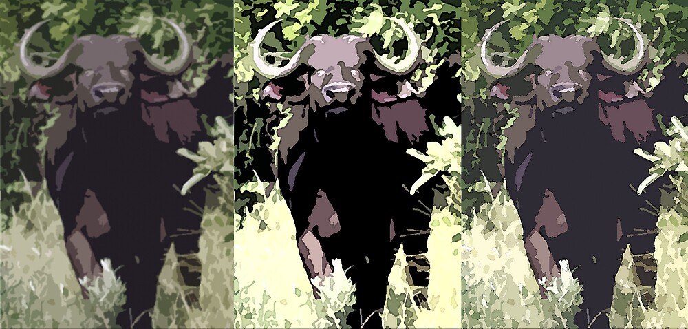 eLithographic Trio Buffalo by Paul Lindenberg