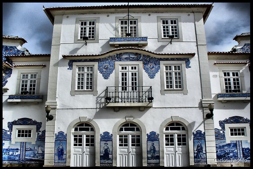 ESTAÇÃO DOS CAMINHOS DE FERRO DE AVEIRO by Carlos Teófilo