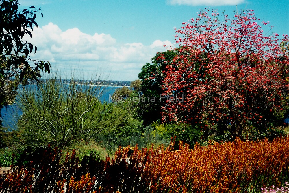 King's park Western Australia view over the Swan River by Michelina Field
