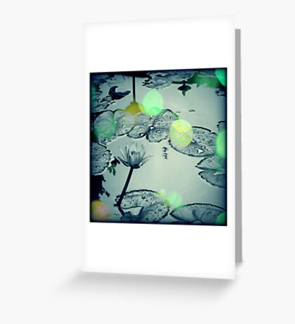 Dance of the Firefly Greeting Card