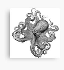 Black and White Octopus Illustration Canvas Print