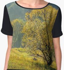 yellow tree in front of spruce forest in fog Chiffon Top