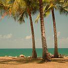 3 Palms by Chris Cohen
