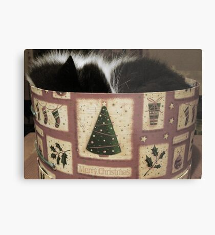 MERRY CHRISTMAS FROM THE CAT IN THE HAT (BOX) Metal Print