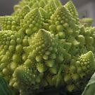 fractal vegetable by Anthony DiMichele