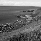 American Camp San Juan Island, WA #9 by Anthony DiMichele