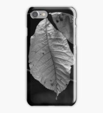 Back to the Wind iPhone Case/Skin