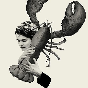 The Lobster by OmerNaor316